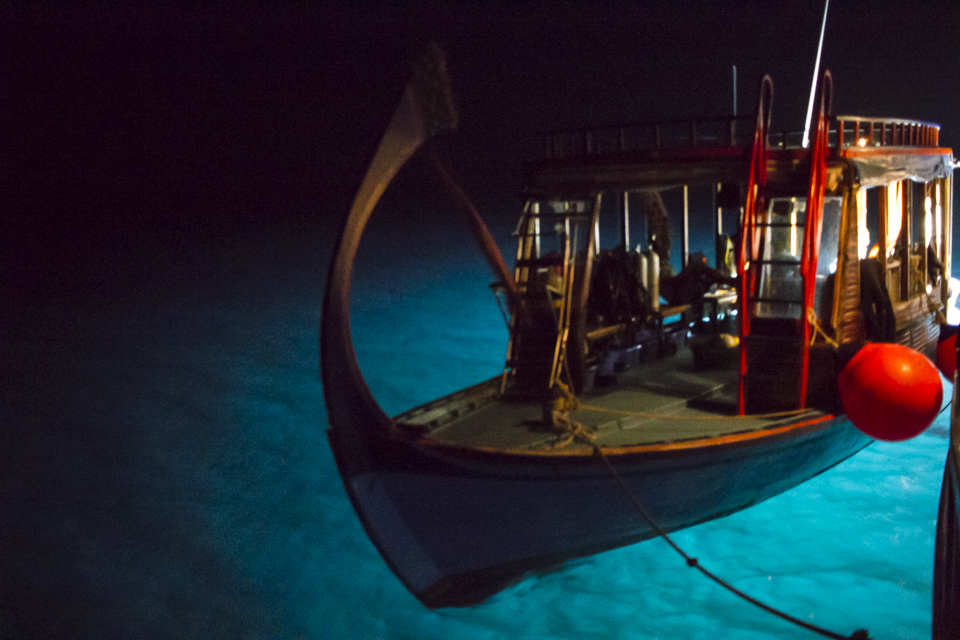Boat tender, at night